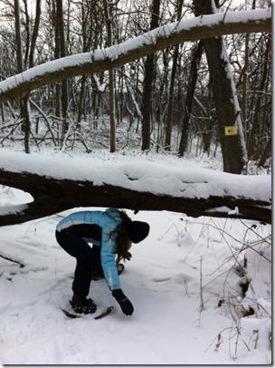 Under Branch